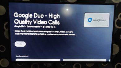 تصویر از اپلیکیشن گوگل Duo به تلویزیون های Android TV آمد