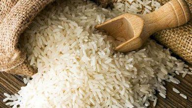 تصویر از آیا خوردن برنج هرروز ضرر دارد؟