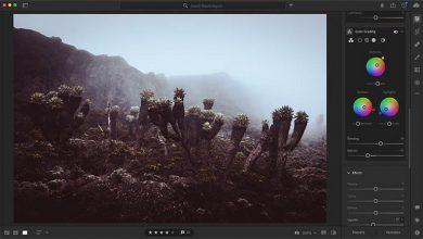 تصویر از ادوبی ابزار بیشتری برای درجه بندی رنگ مانند فیلم به لایت روم اضافه کرد