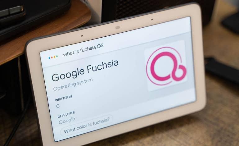 google nest hub fuchsia os - گوگل سیستم عامل فیوشا را برای نسخه اصلی نست هاب منتشر کرد