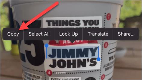 51961 2 - نحوه کپی کردن متن از تصویر در آیفون
