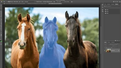 adobes latest photoshop lets you simply hover over an object to select it 390x220 - آپدیت جدید فتوشاپ با امکان انتخاب یک شی با قرارگیری ماوس روی آن